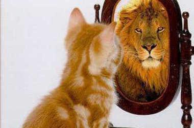 Svět je naše zrcadlo